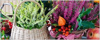 Gartenpflege Herbst by Blumen Peters Gartenpflege Im Herbst