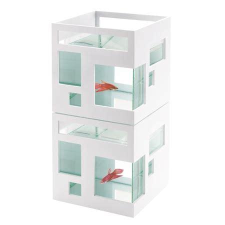 aquarium design les poissons rouges ont d 233 sormais le droit au design lavieenrouge