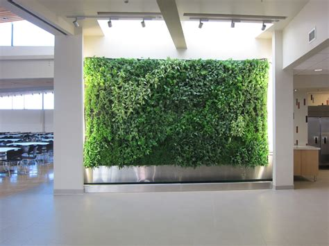 amazing green wall decorating with live plants living