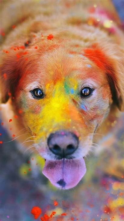 Dog Boo Iphone Colorful Animal Paint Giant