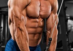 3 Moves To Train Those Triceps
