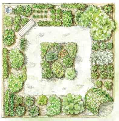 step by step your garden grows five year kitchen garden