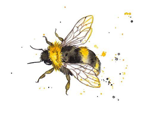 Amy Holliday Illustration : Pattern Design // Honey Bee