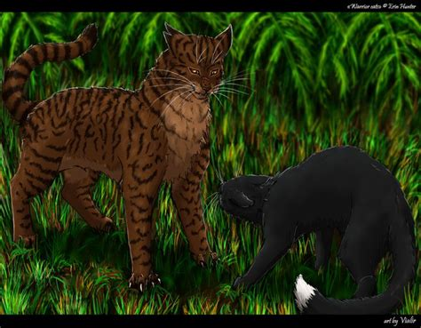 tigerclaw images  pinterest warrior cats