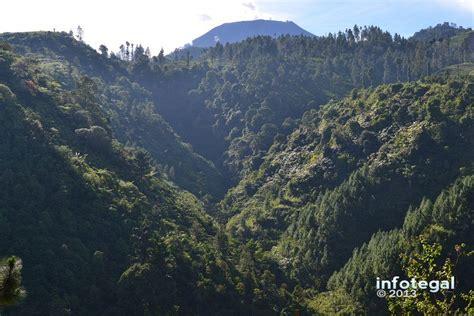 Wisata Alam Pendakian Bukit Cepu   infotegal