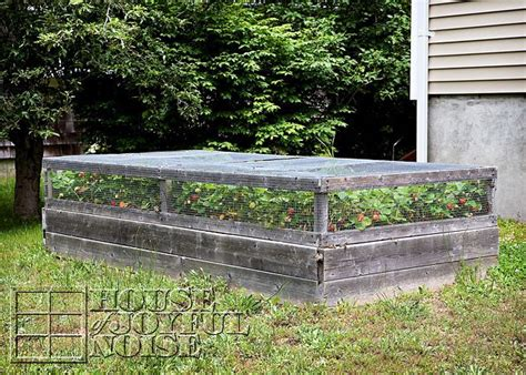 Covered Raised Strawberry Bed. Also, Great Tips On Growing