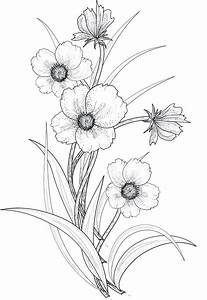 flowers 3 png by roula33 on DeviantArt