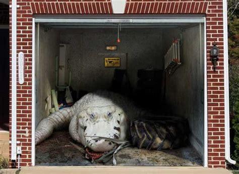 Securing Up And Garage Door by Home Security Smart Garage Door Opener
