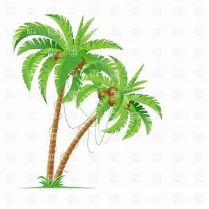 Coconut Tree Leaves Clip Art | www.pixshark.com - Images ...