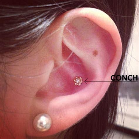 guide  ear piercing   york adorneds