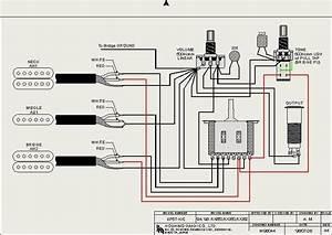 Dimarzio Wiring Diagram