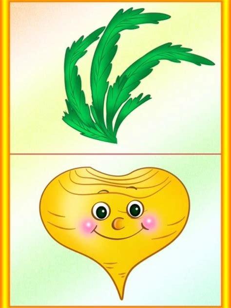 pin  dace bruna  fruits  vegetables montessori