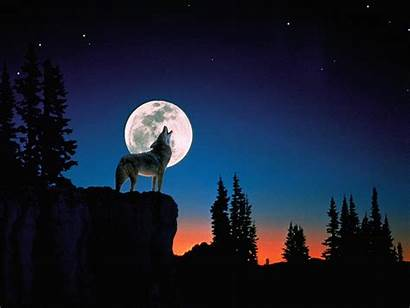 Howling Wolf Moon Wallpapers