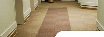 Tile Dominator Carpet Portico Tiles Floor Belvedere