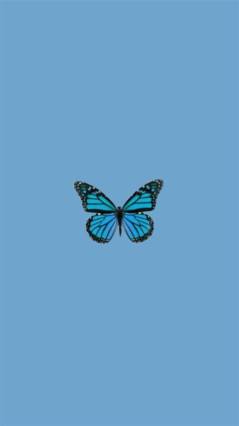 schmetterling tapety butterfly trendy wallpaper