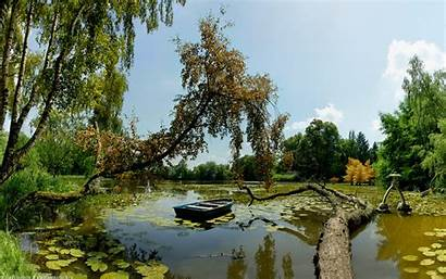 Pond Hipwallpaper