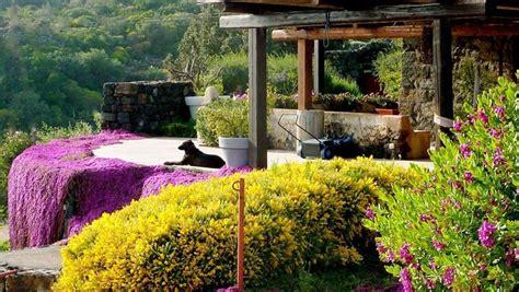 Realizzare Giardini  Progettazione Giardini Come