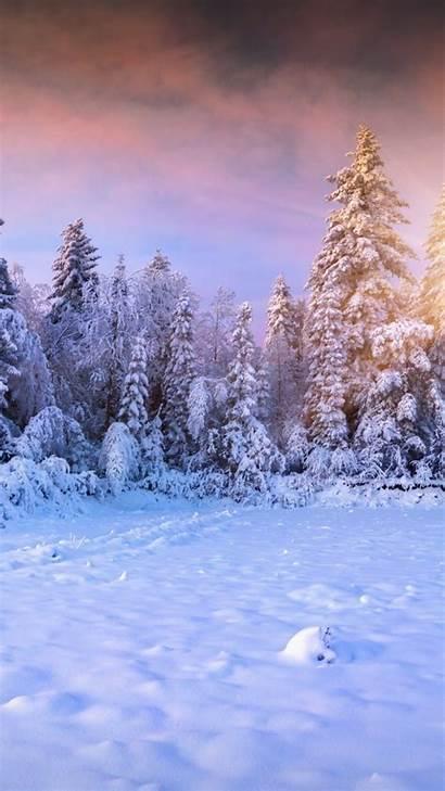 Winter Iphone Mobile Wallpapers Phone Earth Desktop