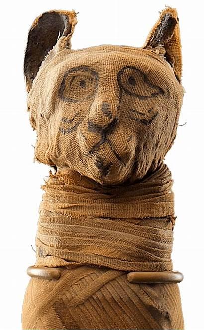 Mummies Exhibition Families