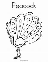 Coloring Peacock Outline Pages Template Drawing Printable Peacocks Feather Print Painting Cute Change Glass Getdrawings Noodle Tracing Twistynoodle Built California sketch template
