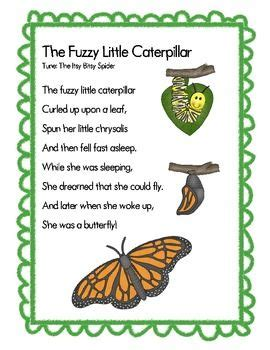 the fuzzy caterpillar teacherspayteachers 847 | 1b52f2d8912db658e35fc062ee9fcc31