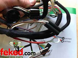 Electrical    Wiring Harness    Triumph Wiring Harness