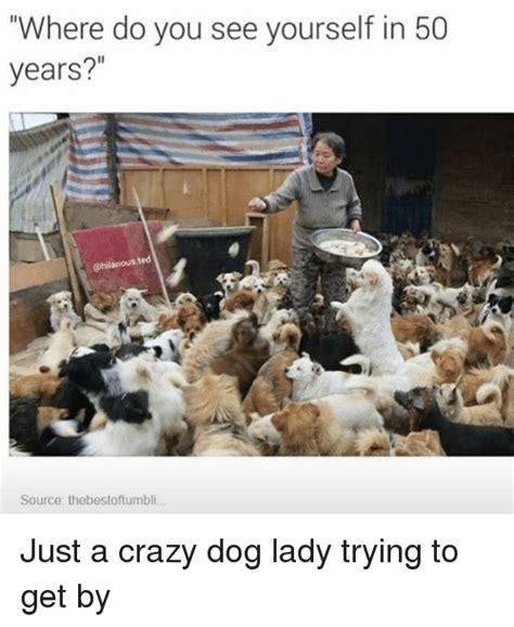 Crazy Dog Lady Meme - funny craziness memes of 2016 on sizzle 9gag