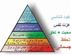 abraham maslow hierarchy of needs essay abraham maslow hierarchy of needs essay custom essays editing site london