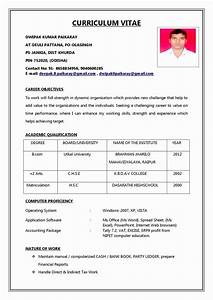 78 Best Of Collection Of Resume Examples Vp Of Sales