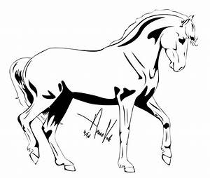 Pictures Of Horse Drawings
