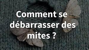 Se Débarrasser Des Guepes Maçonnes : comment se d barrasser des mites ~ Carolinahurricanesstore.com Idées de Décoration