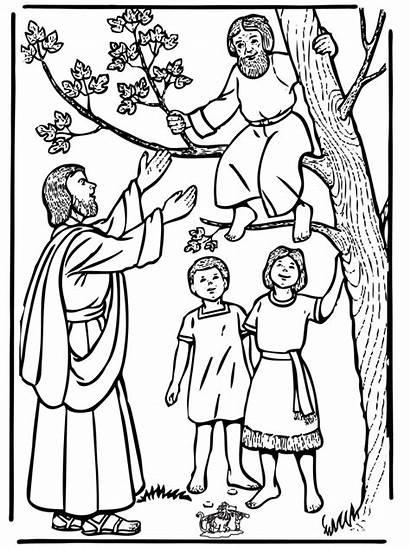 Jesus Zacchaeus Testament Bible Coloring Pages Advertisement