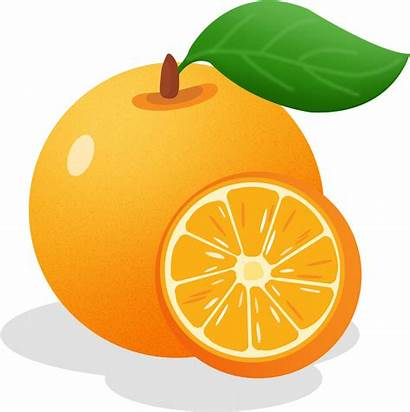 Orange Health Benefits Cartoon Brain Development Hand