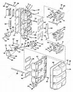 Evinrude 1984 150 - E150stlcrd  Intake Manifold