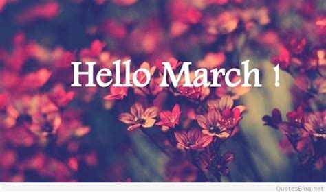 goodbye february   march  pictures