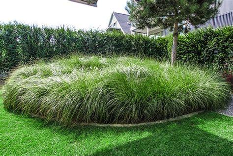 Beetgestaltung Mit Gräsern by Bepflanzung Und Gartengestaltung