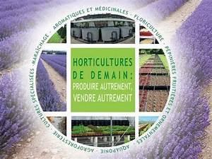 Culture De La Patate Douce : culture de la patate douce claire jaoul youtube ~ Carolinahurricanesstore.com Idées de Décoration