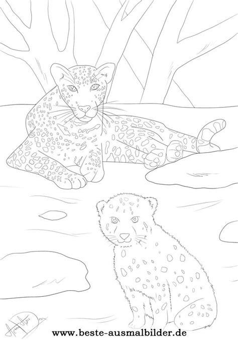 leopard ausmalbild ausmalbilder von tieren zum