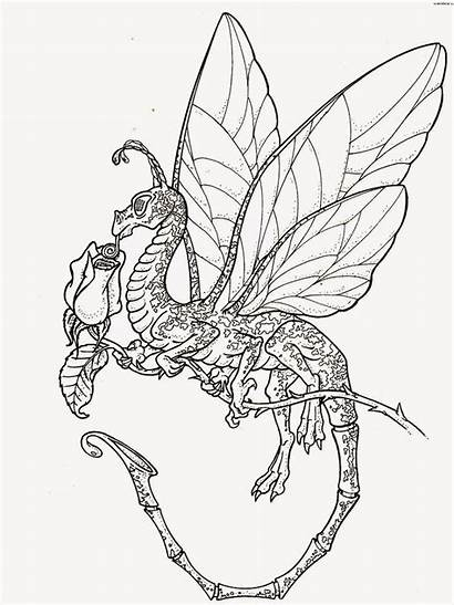 Coloring Dragon Pages Dragons Printable Filminspector