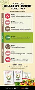 The Scoop On Types Of Plus 14 Ways To Digest Life