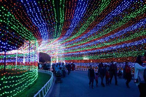 walk through a christmas lights maze holiday first date