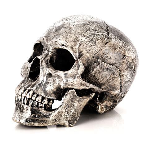 silver skull bronze skeleton fine art sculpture