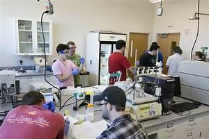 Undergrad  U2013 Chemical And Biochemical Engineering