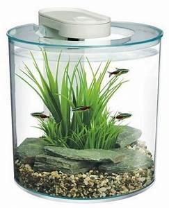 Aquarium Deko Steine : 1000 ideen zu aquarium steine auf pinterest aquarium deko fugensplitt und chihiros led ~ Frokenaadalensverden.com Haus und Dekorationen