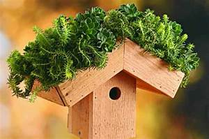 Dach Selber Bauen : vogelhaus selber bauen 34 prima ideen ~ Lizthompson.info Haus und Dekorationen