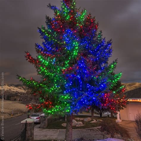 top of tree wont light on led tree wrapping trees with lights