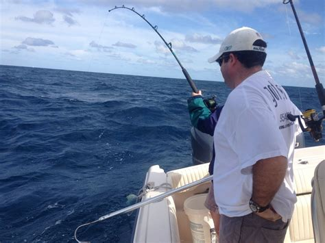 top  saltwater fishing lines eat  tackle