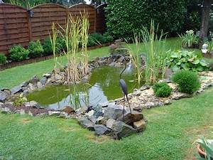 amenagement d39etangs jardins aquatiques et pieces d39eau With plan de bassin de jardin 2 lentretien du bassin de jardin mois par mois dossier