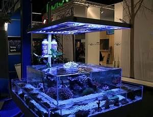 45 Creative and Cool Fish Tanks Ideas - Gallery Gallery