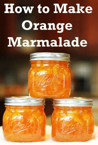 canning     orange marmalade